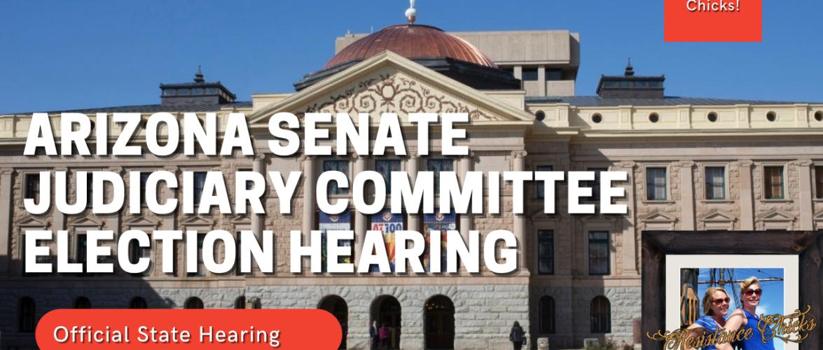 LIVE: Arizona Senate Committee Hearing On Election Integrity