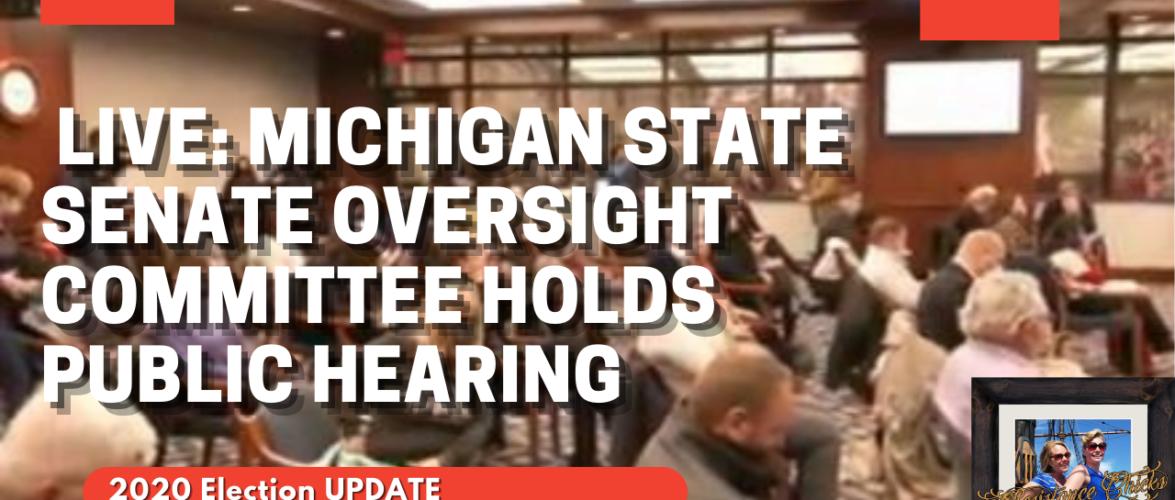 🔴 LIVE: Michigan State Senate Oversight Committee Holds Public Hearing